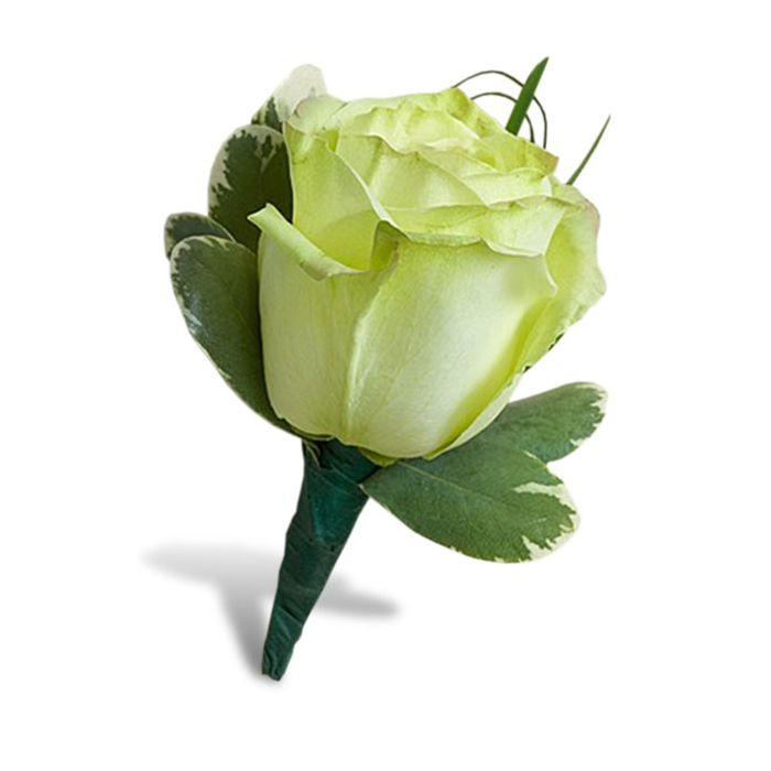 Order Charming Green Rose Boutonniere By Juno Beach Florist