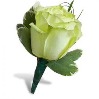 Charming Green Rose Boutonniere