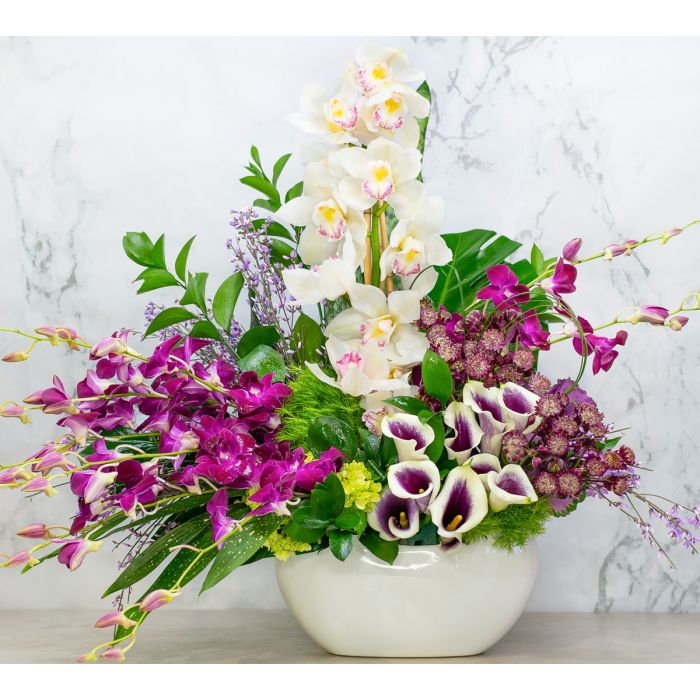 Our sophisticated and enchanting collection of mini calla lillies, white cymbidum, plum dendrobiums, hydrangeas, and ginestra purple half moons in pearl ceramic vase.